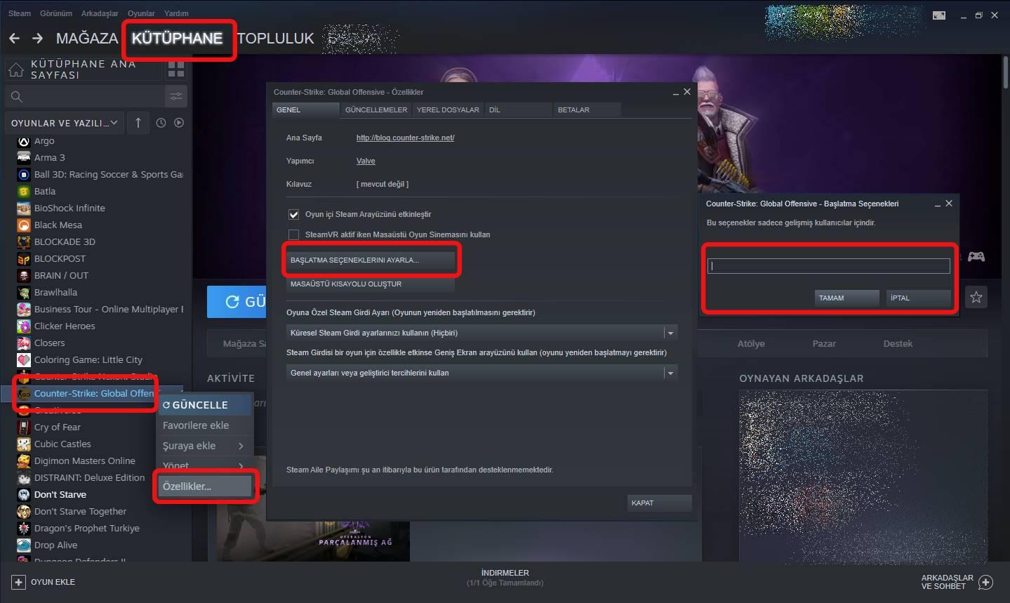 CS:GO başlatma seçeneklerini açma